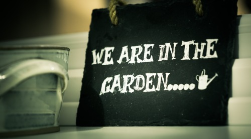(swimmingpoolguru.eu) we-are-in-the-garden